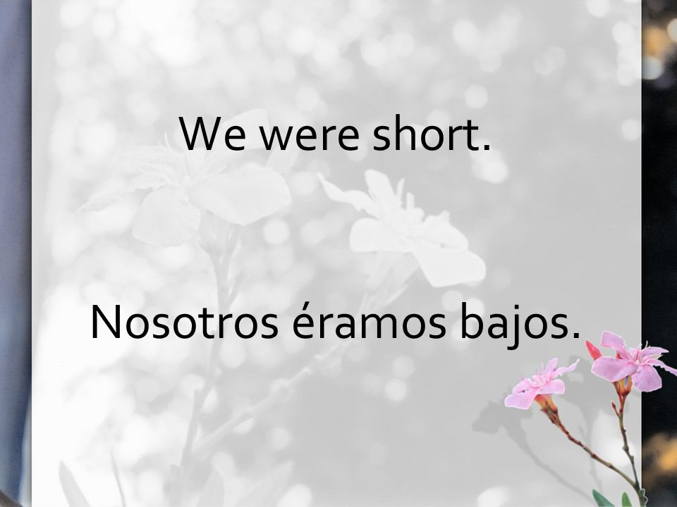 We were short. Nosotros éramos bajos.