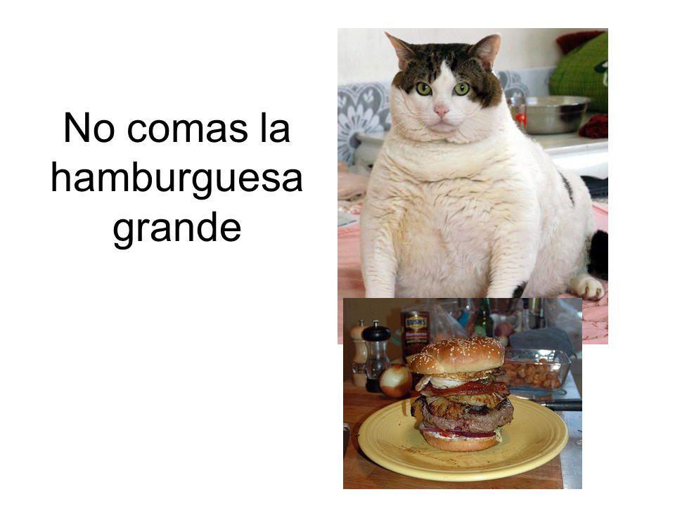 No comas la hamburguesa grande