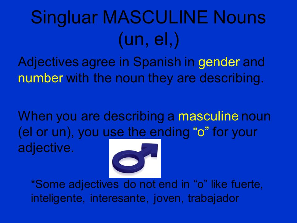 Singluar MASCULINE Nouns (un, el,) Adjectives agree in Spanish in gender and number with the noun they are describing. When you are describing a mascu