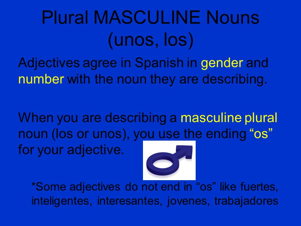 Plural MASCULINE Nouns (unos, los) Adjectives agree in Spanish in gender and number with the noun they are describing. When you are describing a mascu