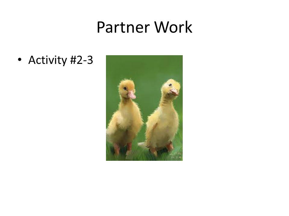 Partner Work Activity #2-3