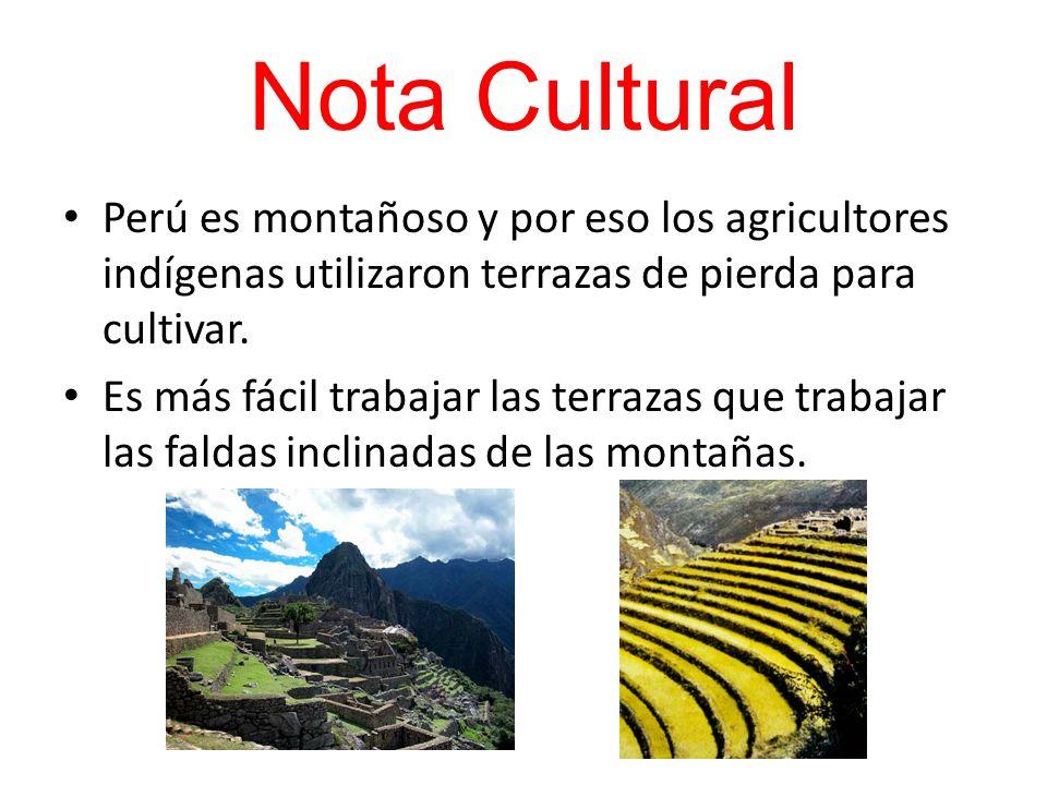 Nota Cultural Perú es montañoso y por eso los agricultores indígenas utilizaron terrazas de pierda para cultivar. Es más fácil trabajar las terrazas q