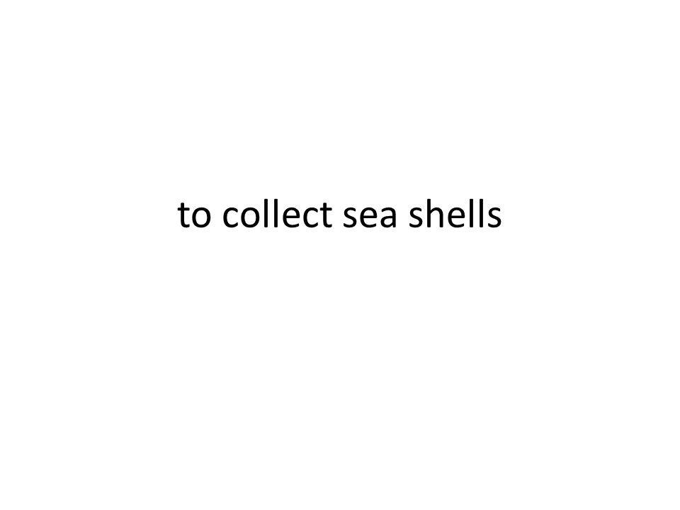 coleccionar caracoles