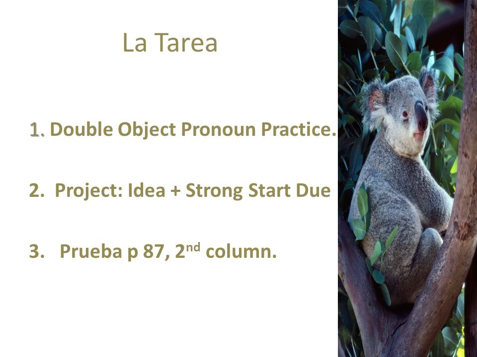 La Tarea 1. 1. Double Object Pronoun Practice. 2. Project: Idea + Strong Start Due 3. Prueba p 87, 2 nd column.
