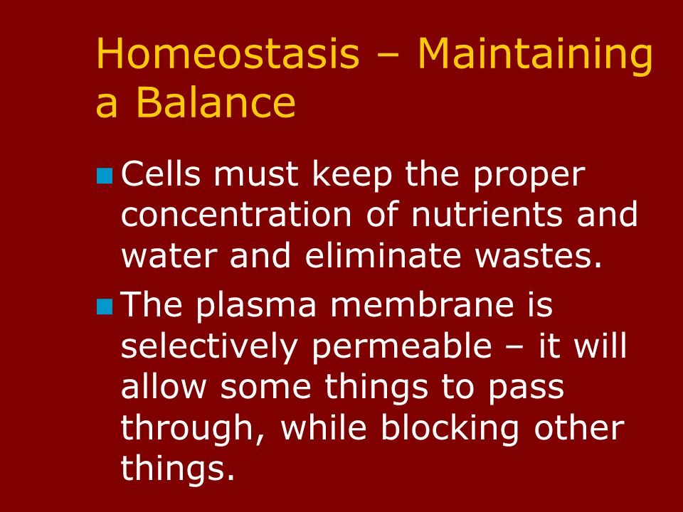Homeostasis – Maintaining a Balance Cells must keep the proper concentration of nutrients and water and eliminate wastes.