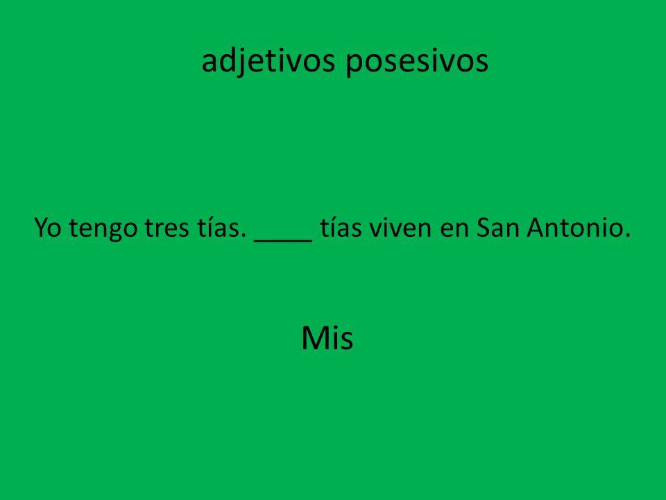 Yo tengo tres tías. ____ tías viven en San Antonio. Mis adjetivos posesivos