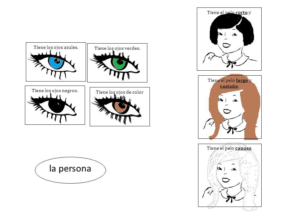 Tiene los ojos azules. la persona Tiene los ojos verdes.Tiene los ojos negros.Tiene los ojos de color café. Tiene el pelo corto y negro. Tiene el pelo