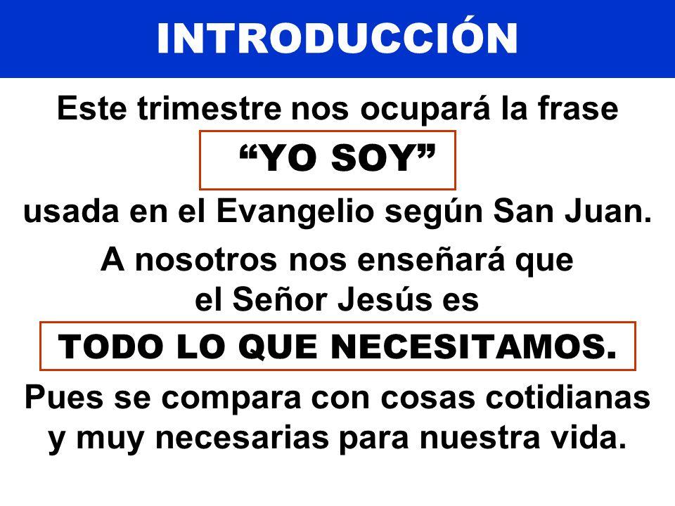 INTRODUCCIÓN El pan de vida 6:35 La luz del mundo 8:12 La puerta10: 9 El buen pastor10:11 La resurrección y la vida11:25 El camino, y la verdad, y la vida14: 6 La vid15: 5 Pues dijo: YO SOY...