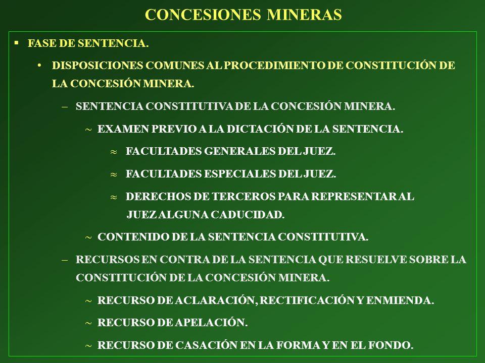 FASE DE SENTENCIA. DISPOSICIONES COMUNES AL PROCEDIMIENTO DE CONSTITUCIÓN DE LA CONCESIÓN MINERA. SENTENCIA CONSTITUTIVA DE LA CONCESIÓN MINERA. EXAME
