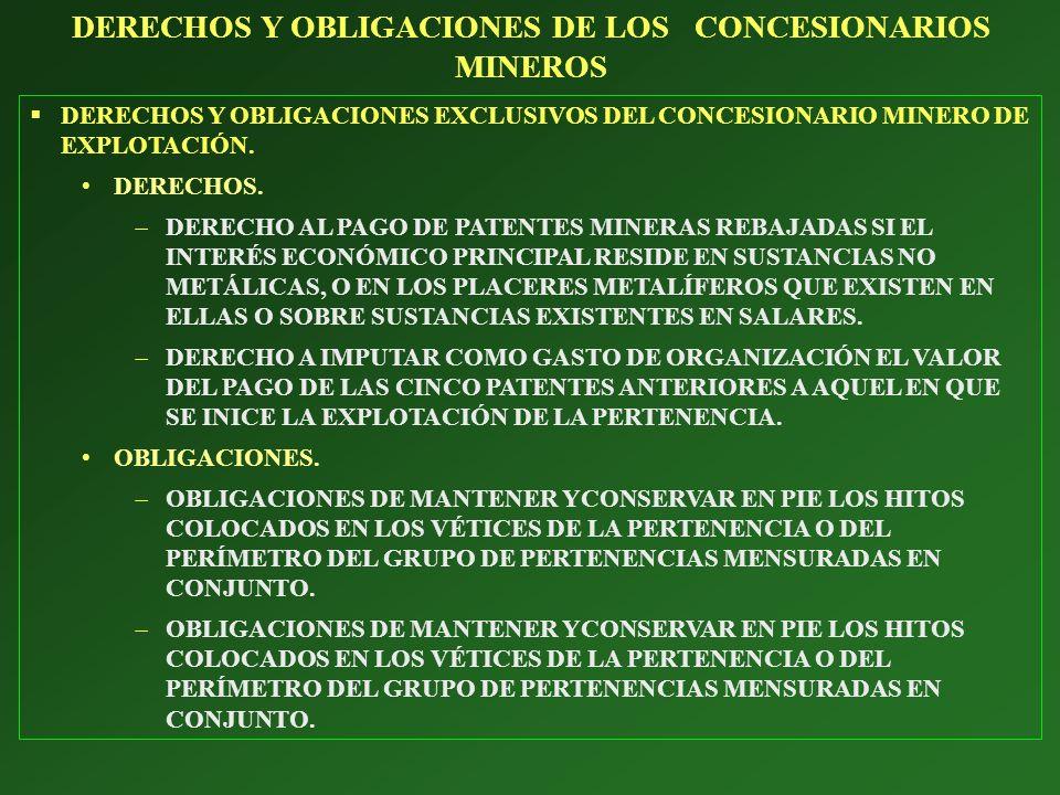 DERECHOS Y OBLIGACIONES EXCLUSIVOS DEL CONCESIONARIO MINERO DE EXPLOTACIÓN. DERECHOS. DERECHO AL PAGO DE PATENTES MINERAS REBAJADAS SI EL INTERÉS ECON