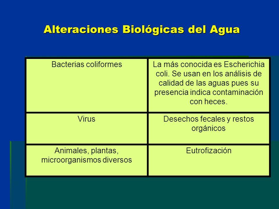 Alteraciones Biológicas del Agua Bacterias coliformesLa más conocida es Escherichia coli. Se usan en los análisis de calidad de las aguas pues su pres