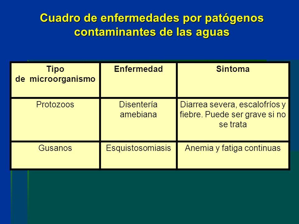 Cuadro de enfermedades por patógenos contaminantes de las aguas Tipo de microorganismo EnfermedadSintoma ProtozoosDisentería amebiana Diarrea severa,