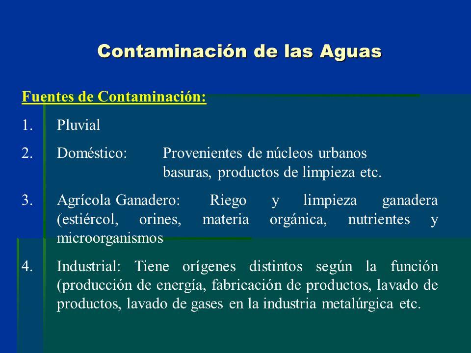 Contaminación de las Aguas Fuentes de Contaminación: 1.Pluvial 2.Doméstico: Provenientes de núcleos urbanos basuras, productos de limpieza etc. 3.Agrí