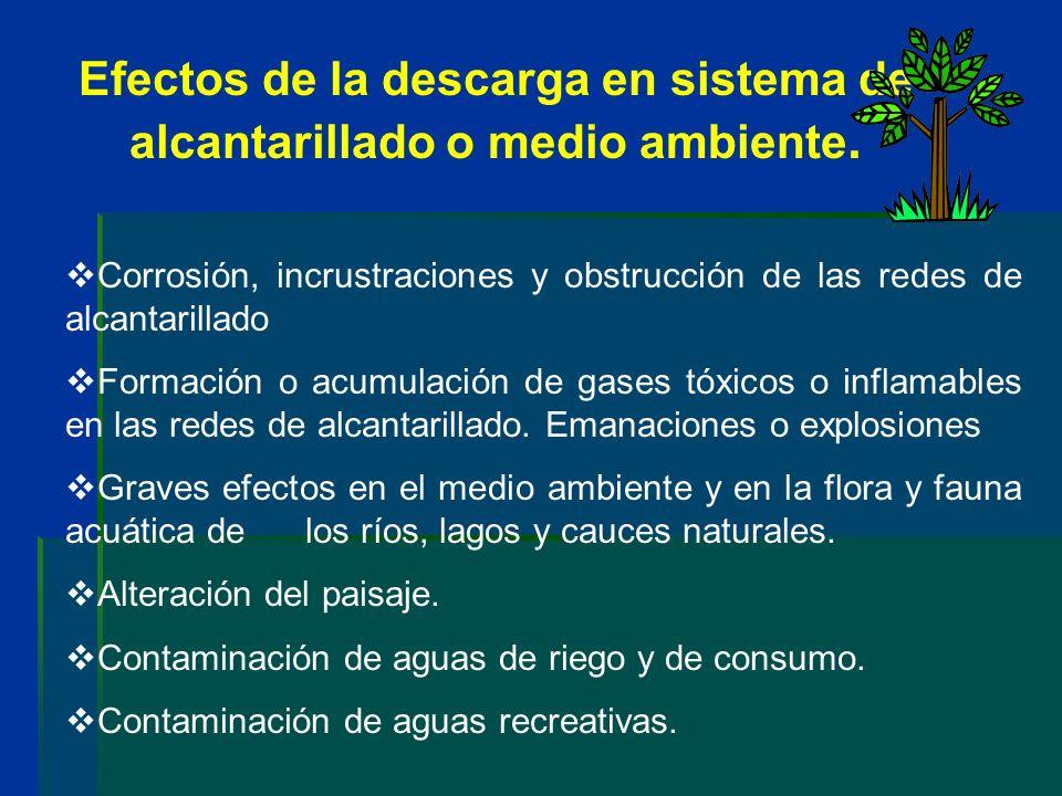 Efectos de la descarga en sistema de alcantarillado o medio ambiente. Corrosión, incrustraciones y obstrucción de las redes de alcantarillado Formació