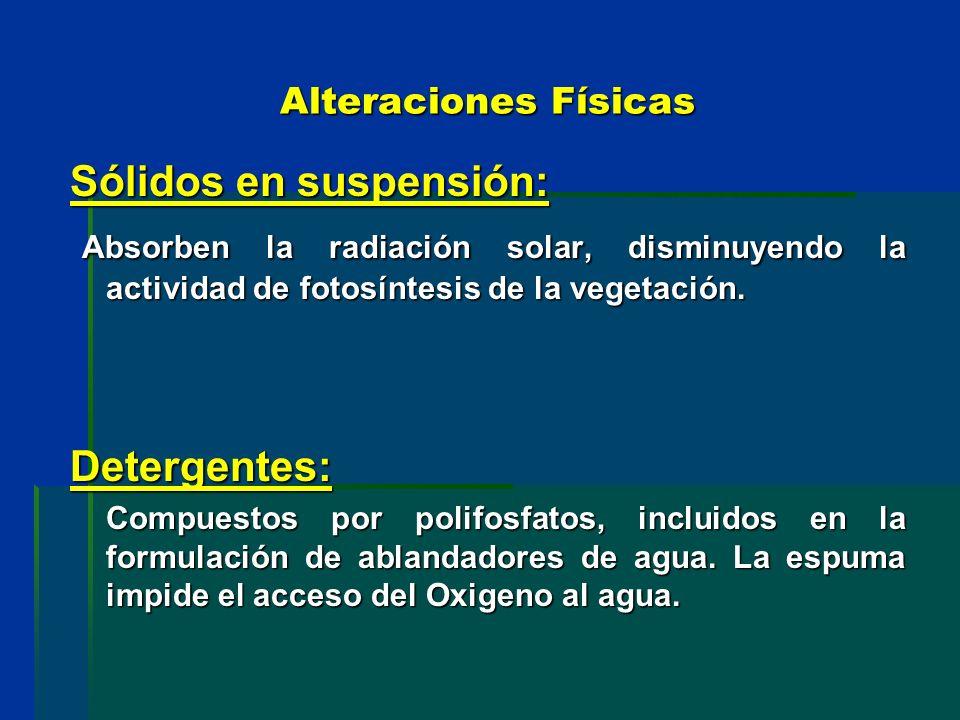 Alteraciones Físicas Sólidos en suspensión: Absorben la radiación solar, disminuyendo la actividad de fotosíntesis de la vegetación. Absorben la radia