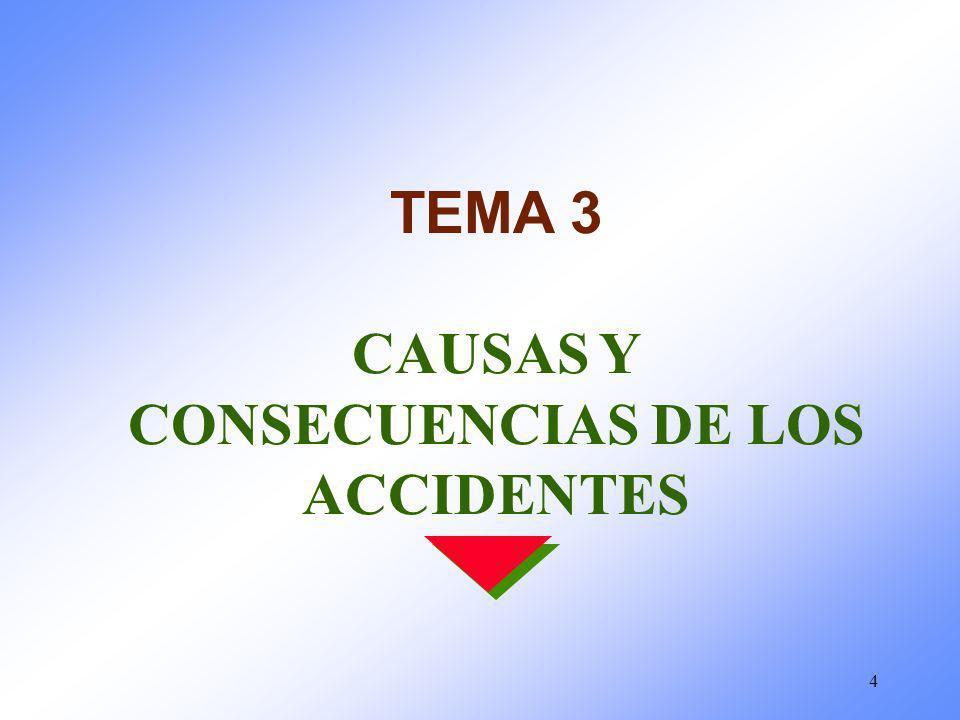 4 TEMA 3 CAUSAS Y CONSECUENCIAS DE LOS ACCIDENTES
