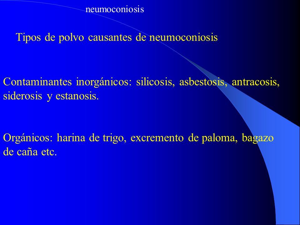 neumoconiosis Tipos de polvo causantes de neumoconiosis Contaminantes inorgánicos: silicosis, asbestosis, antracosis, siderosis y estanosis. Orgánicos