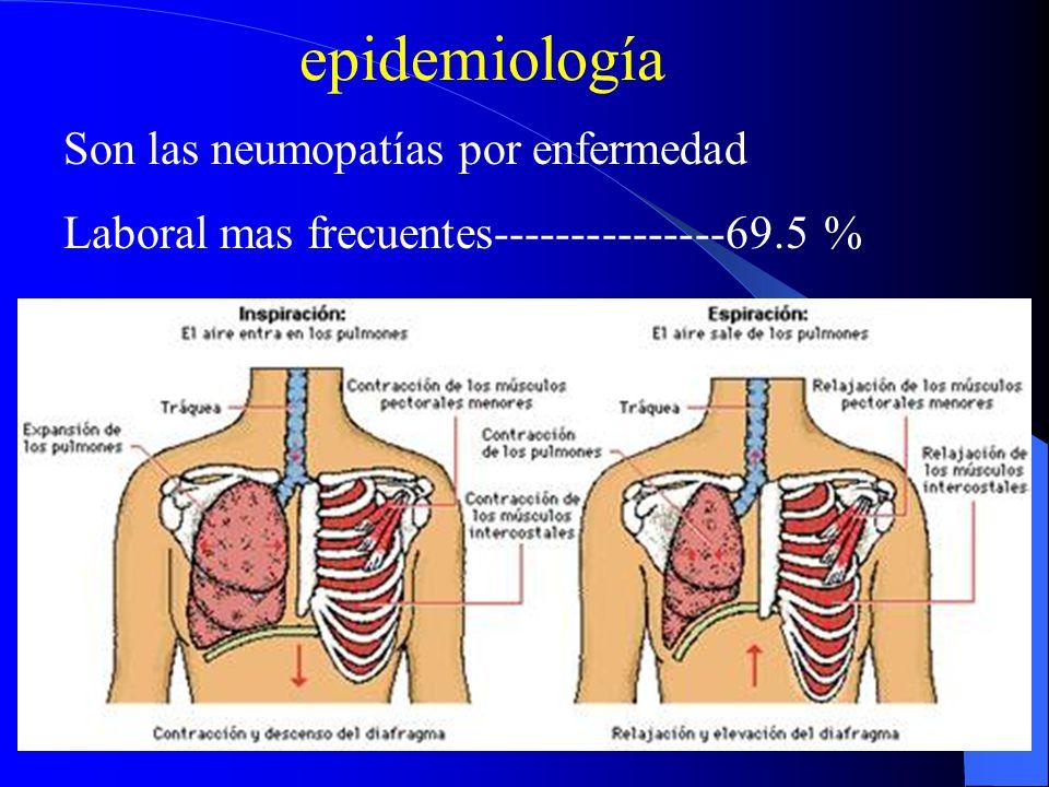 epidemiología Son las neumopatías por enfermedad Laboral mas frecuentes---------------69.5 %
