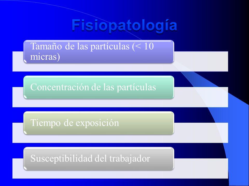 Tamaño de las partículas (< 10 micras) Concentración de las partículasTiempo de exposiciónSusceptibilidad del trabajador