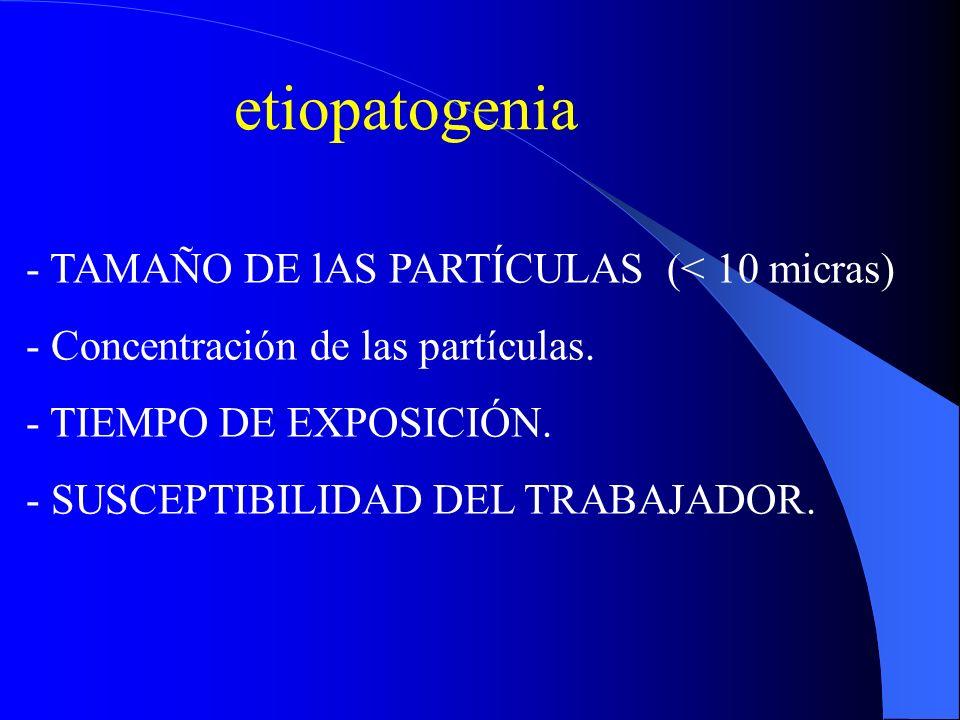 etiopatogenia - TAMAÑO DE lAS PARTÍCULAS (< 10 micras) - Concentración de las partículas. - TIEMPO DE EXPOSICIÓN. - SUSCEPTIBILIDAD DEL TRABAJADOR.