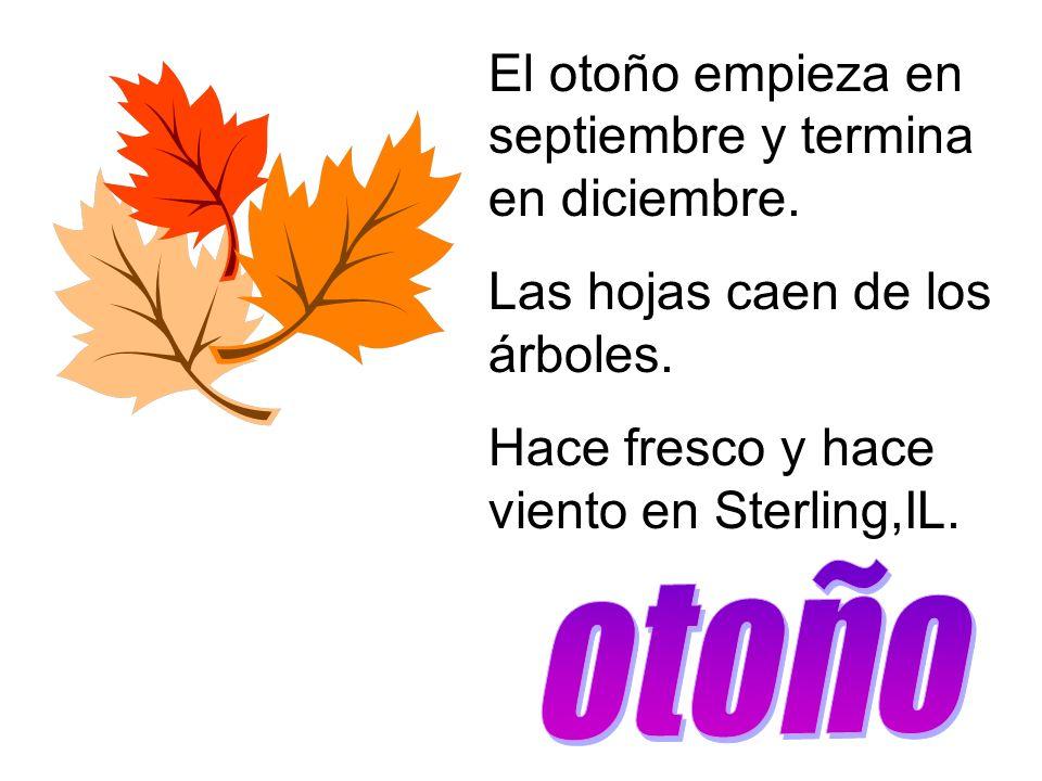 El otoño empieza en septiembre y termina en diciembre. Las hojas caen de los árboles. Hace fresco y hace viento en Sterling,IL.