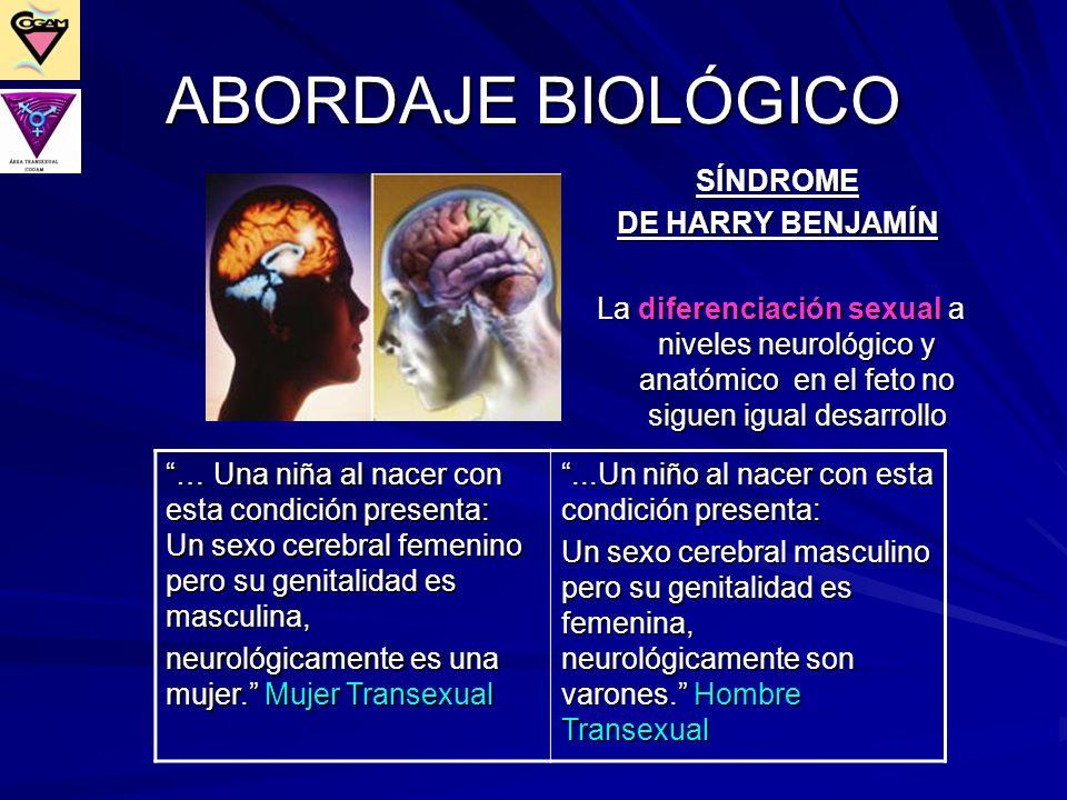 SÍNDROME DE HARRY BENJAMÍN La diferenciación sexual a niveles neurológico y anatómico en el feto no siguen igual desarrollo La diferenciación sexual a