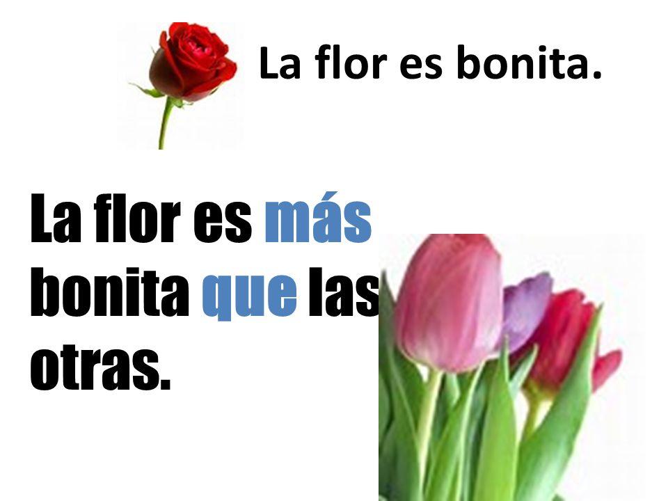 La flor es bonita. La flor es más bonita que las otras.