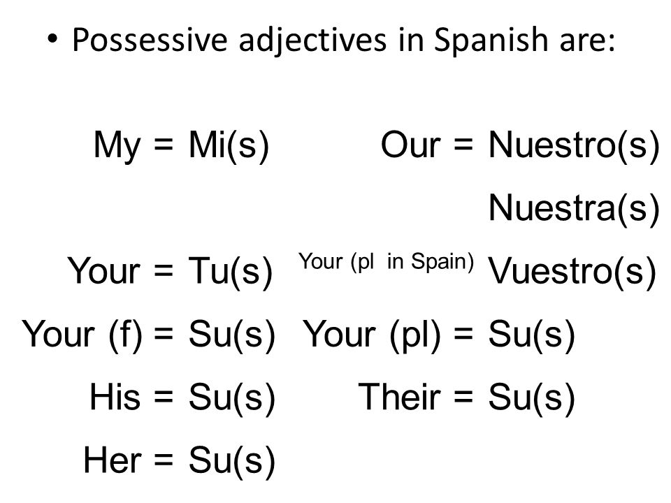 Possessive adjectives in Spanish are: My =Mi(s)Our =Nuestro(s) Nuestra(s) Your =Tu(s) Your (pl in Spain) Vuestro(s) Your (f) =Su(s)Your (pl) =Su(s) Hi