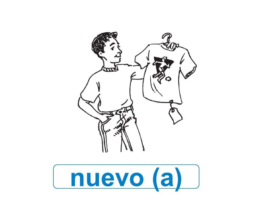 nuevo (a)