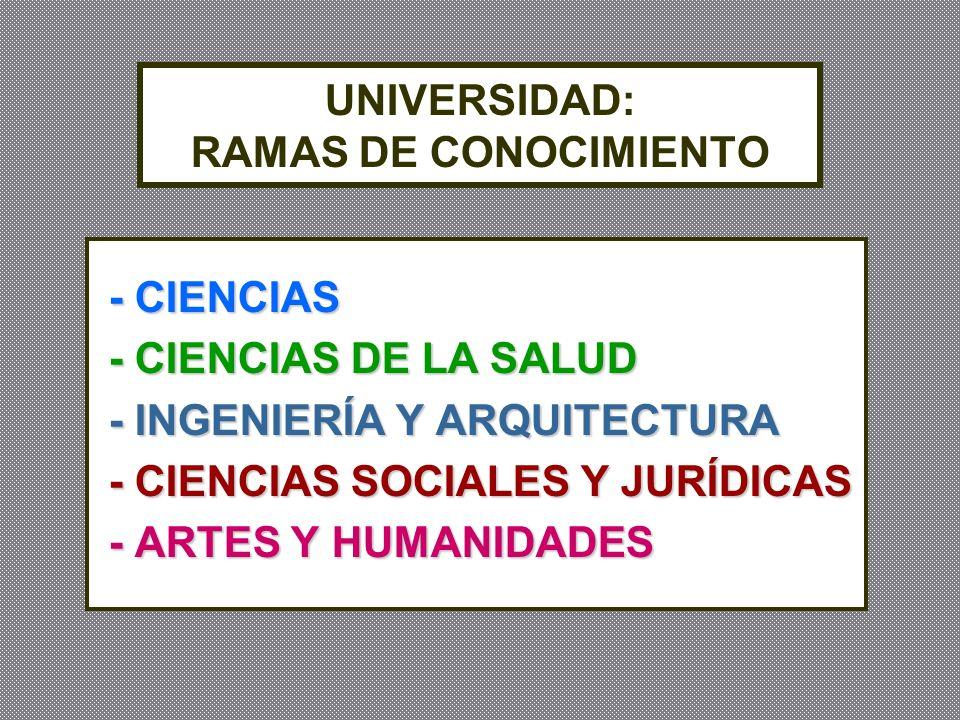 UNIVERSIDAD: RAMAS DE CONOCIMIENTO - CIENCIAS - CIENCIAS - CIENCIAS DE LA SALUD - CIENCIAS DE LA SALUD - INGENIERÍA Y ARQUITECTURA - INGENIERÍA Y ARQU