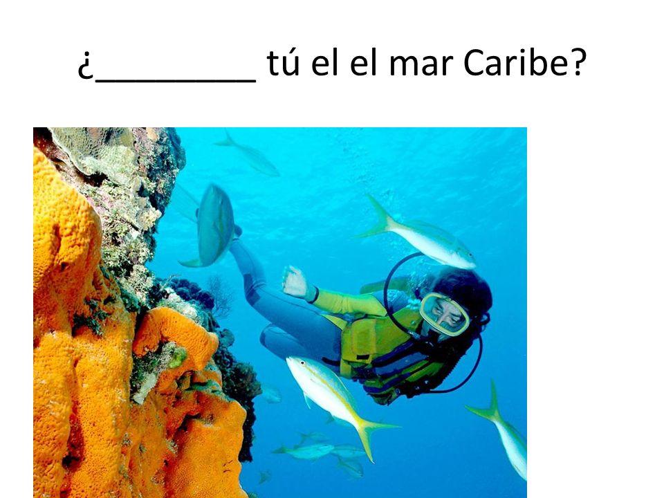 ¿________ tú el el mar Caribe?
