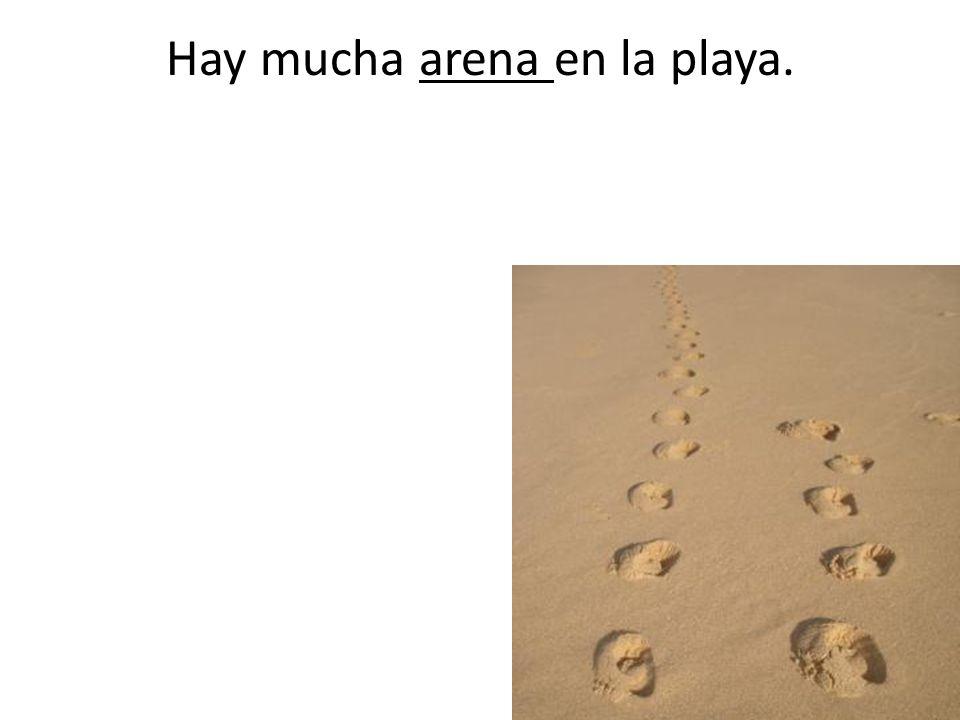 Hay mucha arena en la playa.