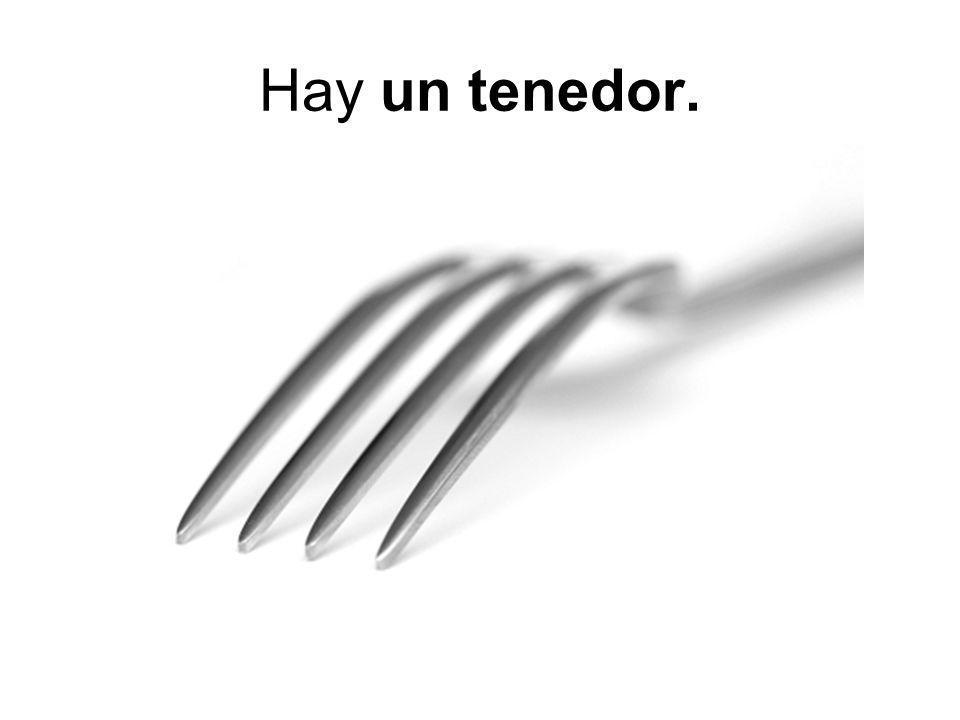 Hay un tenedor.