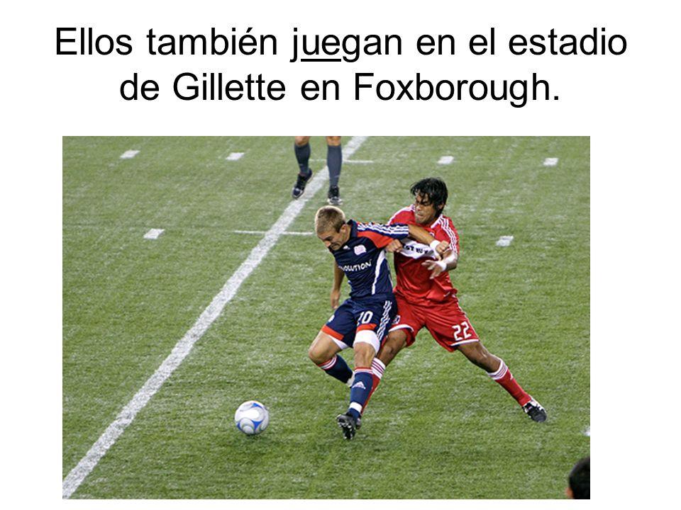 Ellos también juegan en el estadio de Gillette en Foxborough.