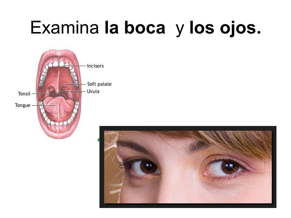 Examina la boca y los ojos.