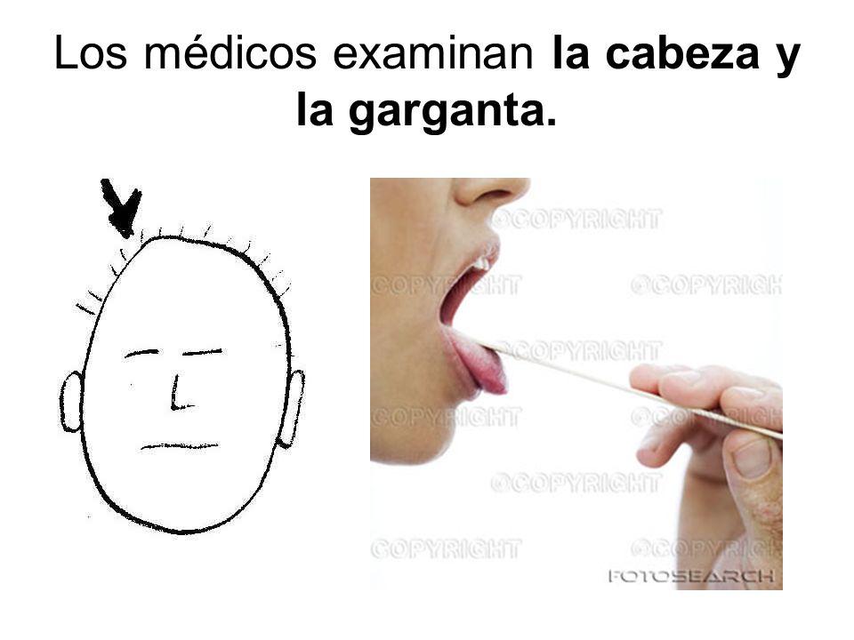 Los médicos examinan la cabeza y la garganta.