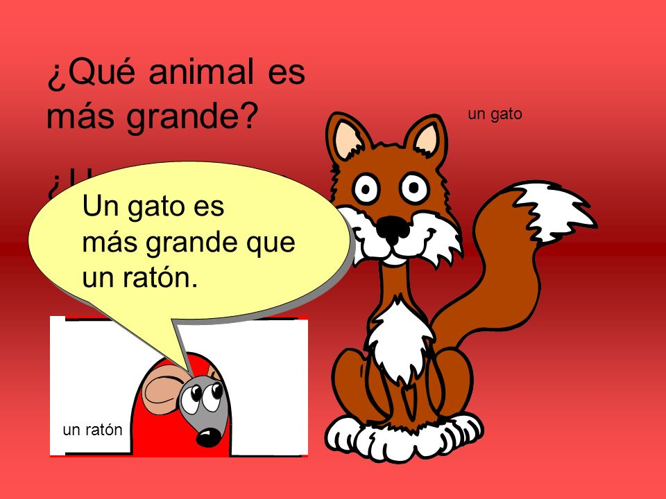 ¿Qué animal es más grande.¿Un ratón o un gato. Un gato es más grande que un ratón.