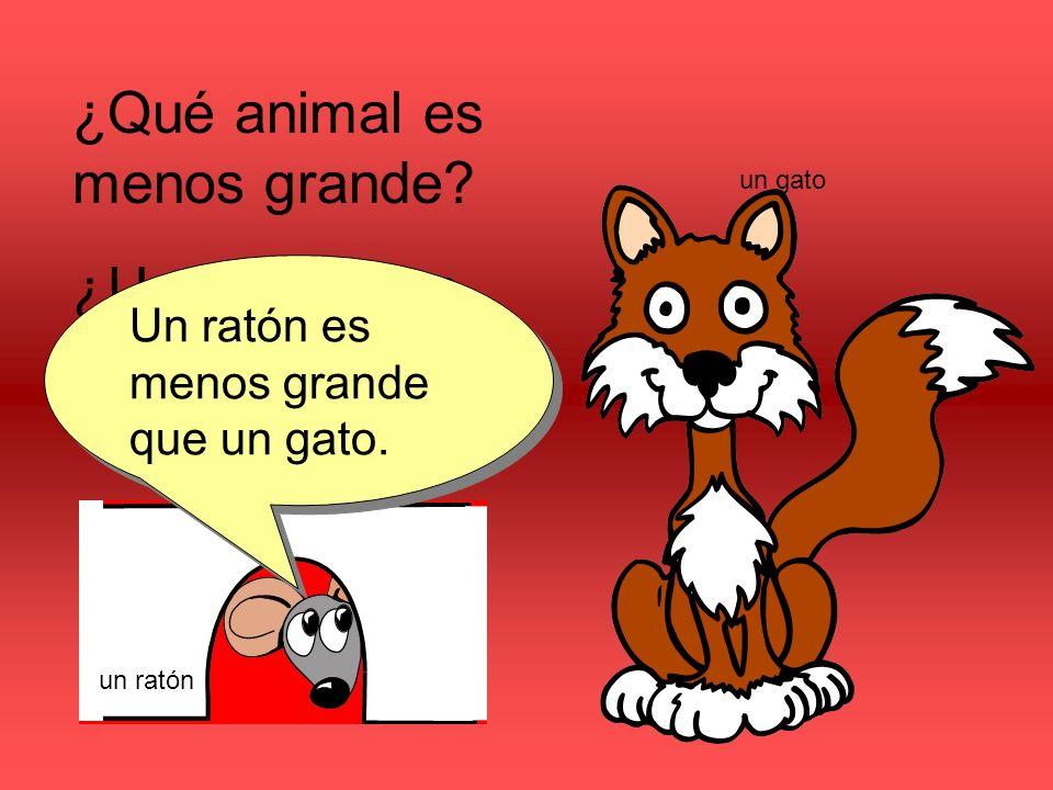 ¿Qué animal es menos grande.¿Un ratón o un gato. Un ratón es menos grande que un gato.