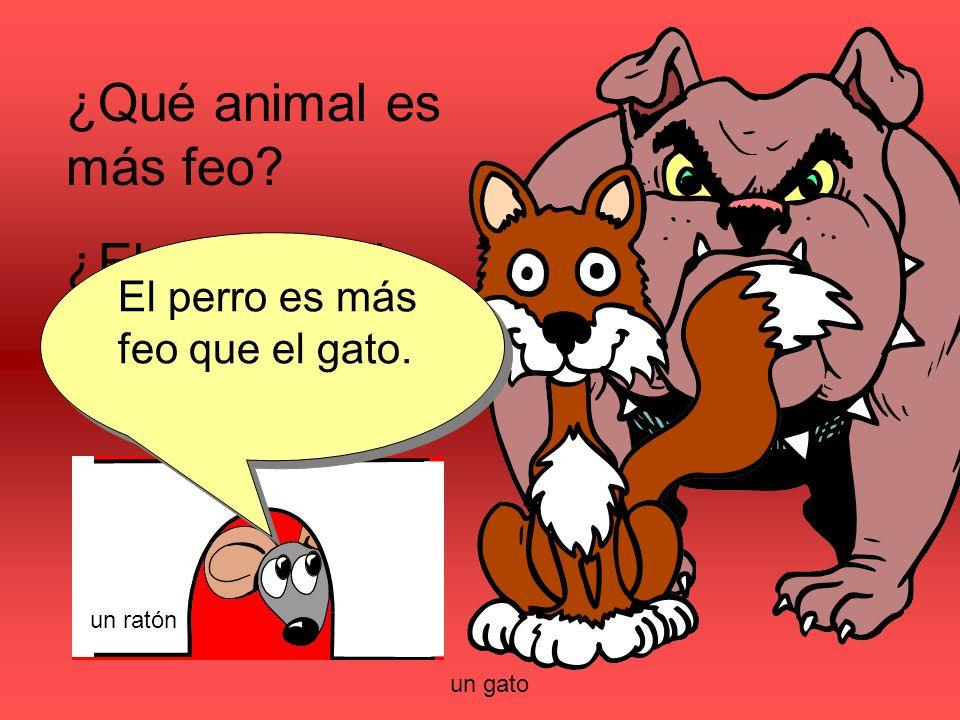 ¿Qué animal es más feo? ¿El perro o el gato? El perro es más feo que el gato. un gato un ratón
