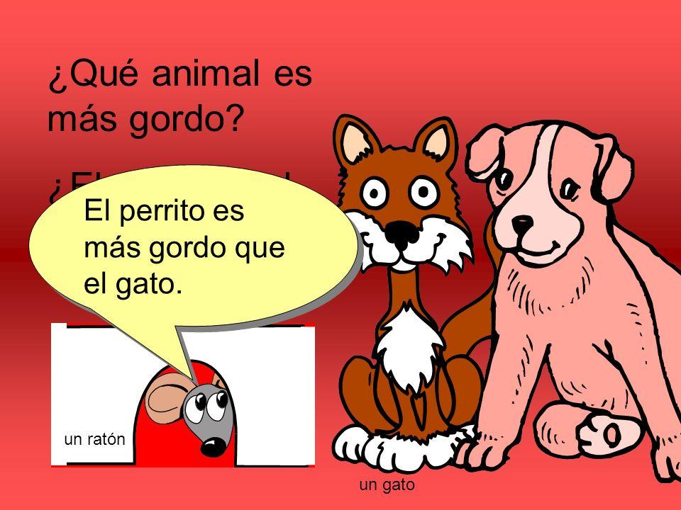 ¿Qué animal es más gordo. ¿El perrito o el gato. El perrito es más gordo que el gato.