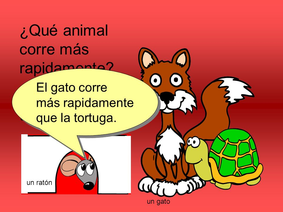 ¿Qué animal corre más rapidamente. ¿El gato o la tortuga.