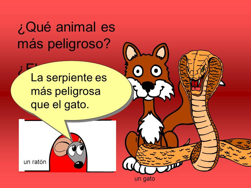 ¿Qué animal es más peligroso.¿El gato o la serpiente.