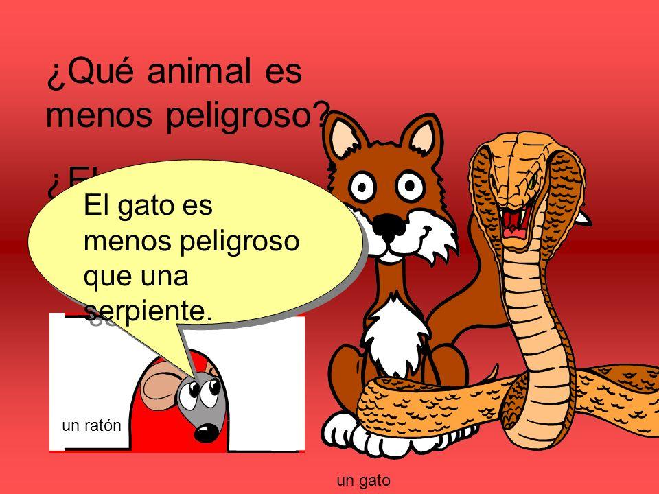 ¿Qué animal es menos peligroso. ¿El gato o la serpiente.