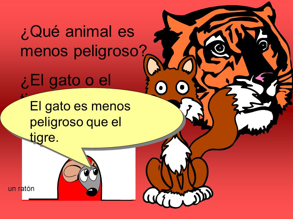 ¿Qué animal es menos peligroso. ¿El gato o el tigre.