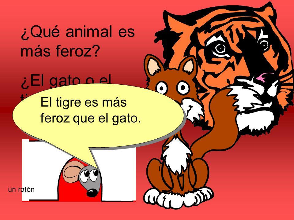 ¿Qué animal es más feroz? ¿El gato o el tigre? El tigre es más feroz que el gato. un ratón