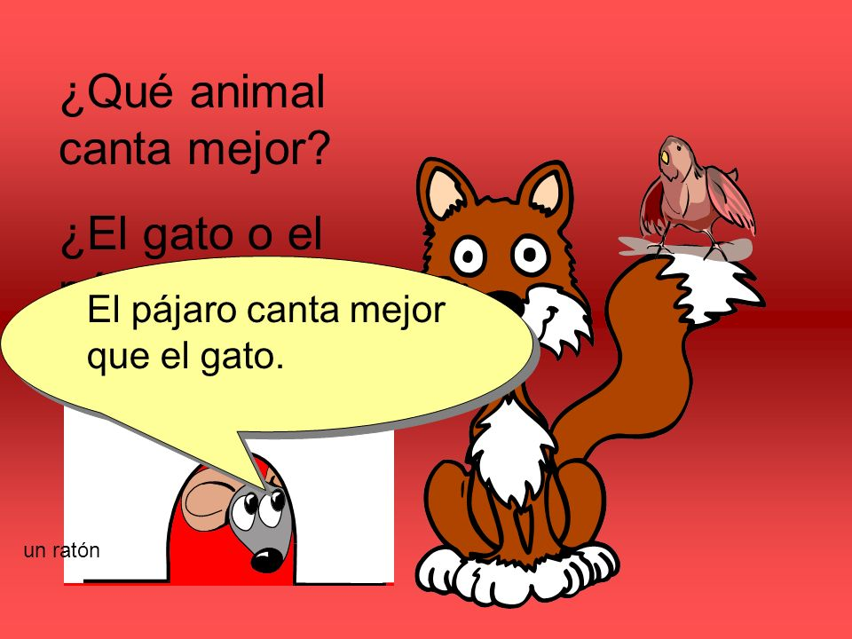 ¿Qué animal canta mejor? ¿El gato o el pájaro? El pájaro canta mejor que el gato. un ratón