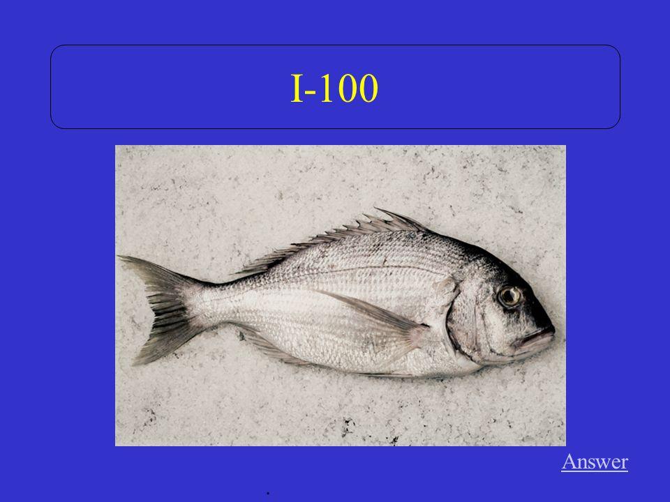 III-100 Answer. Yo ______________ en el café. (to eat lunch)