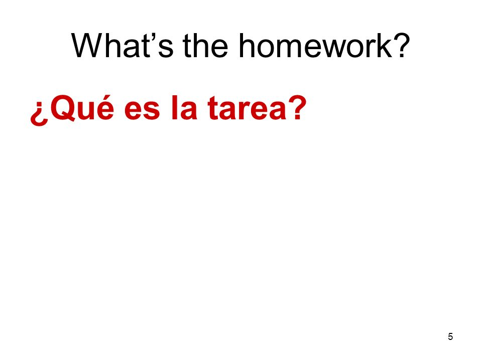 5 Whats the homework? ¿Qué es la tarea?