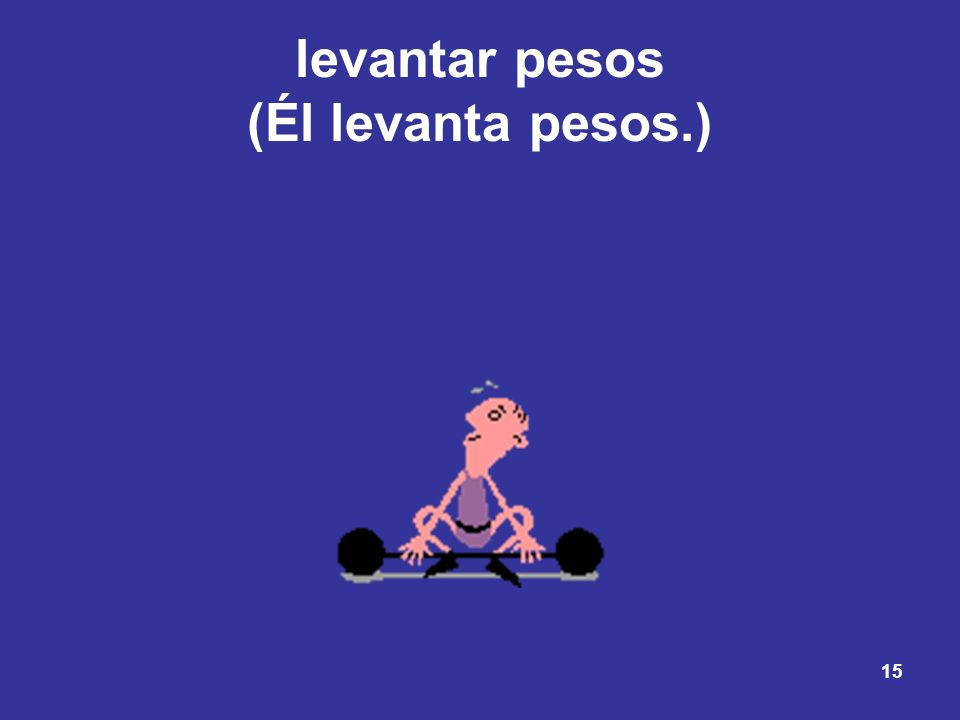 15 levantar pesos (Él levanta pesos.)
