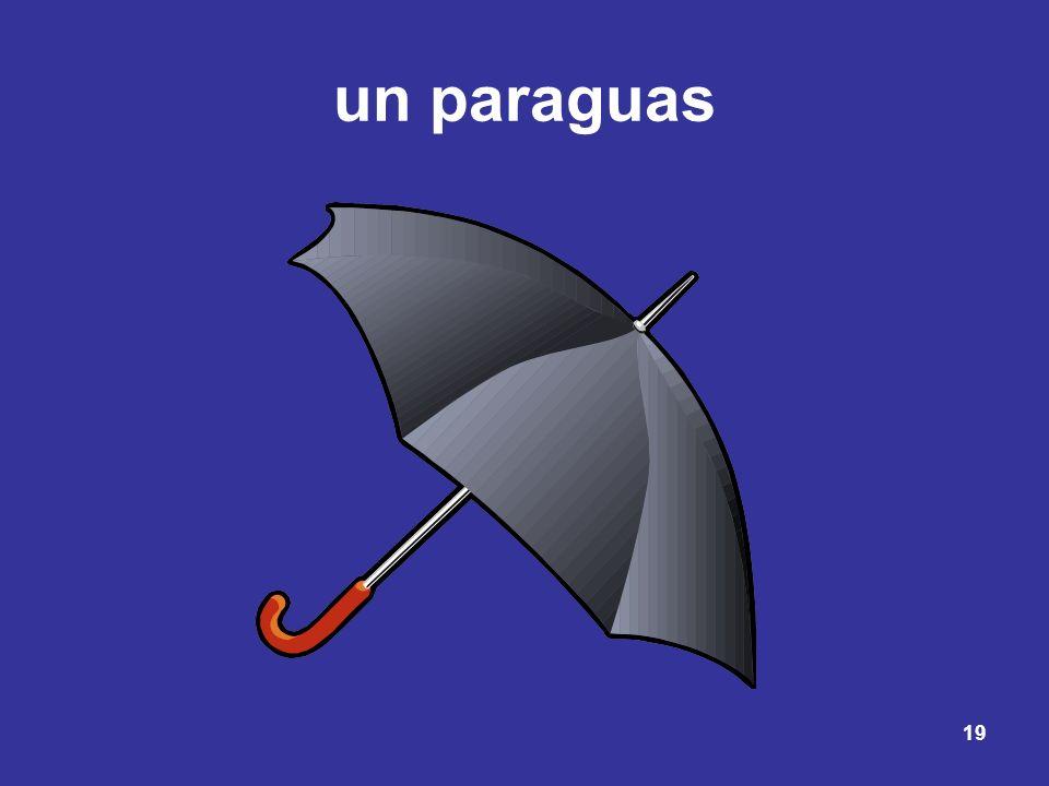 19 un paraguas